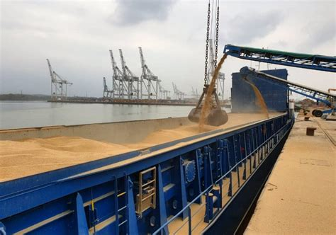 Grain price: UK exports moving at record pace - Agriland